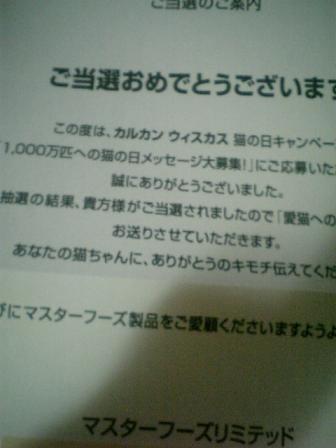 2007.0414 (1).JPG