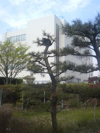 2008.04.26 (1).JPG