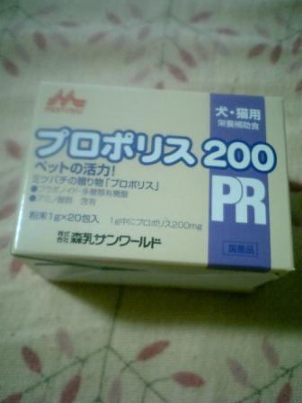 2008.2.22.JPG