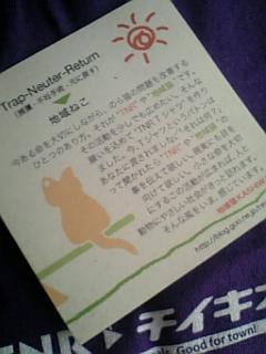 TNRシャツ2007..JPG